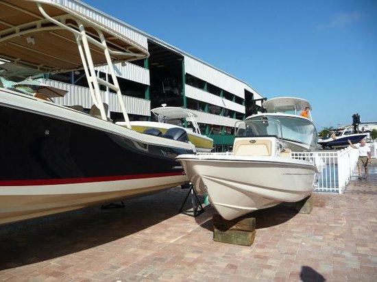 Cedar Bay Yacht Club: Tarmack