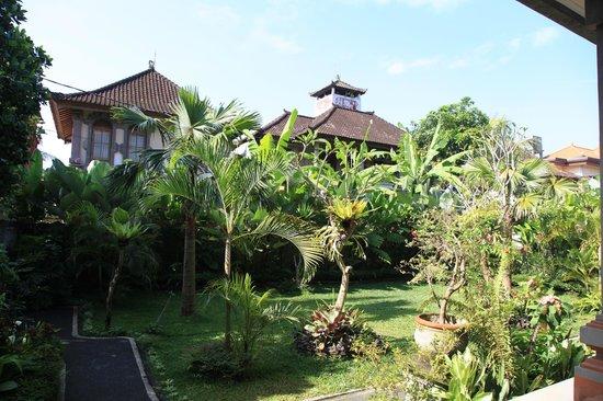 Tanah Semujan Ubud : yard