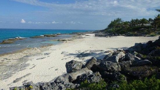 Stella Maris Resort Club: Moonshine Beach
