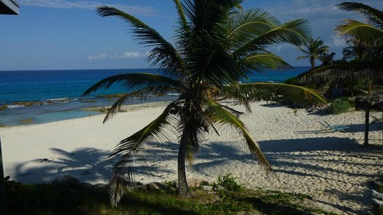 Stella Maris Resort Club : Moonshine Beach