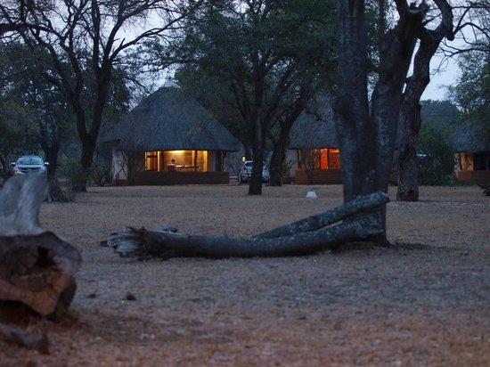 Satara Rest Camp: De huisjes staan veelal in een grote kring (avond)