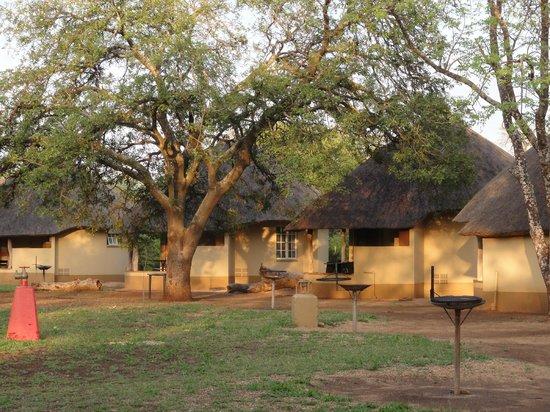 Satara Rest Camp: De huisjes staan veelal in een grote kring (overdag)