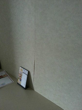 Microtel Inn & Suites by Wyndham Philadelphia Airport: Wallpaper in the room