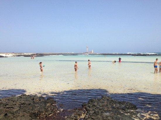 playa - Picture of El Cotillo Beach & Lagoons, El Cotillo - TripAdvisor
