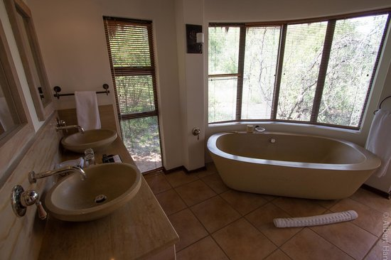 Ivory Tree Game Lodge: Open Area