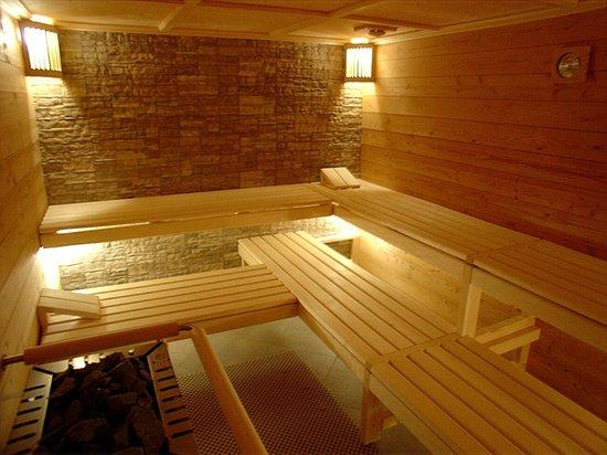Hotel Europa Annex : Sauna
