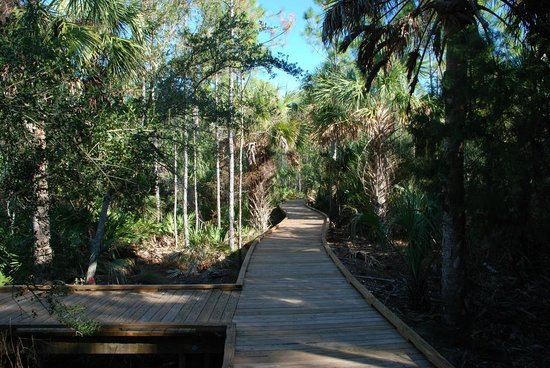 Yankeetown, FL: Wheelchair and puppy accessible boardwalk.