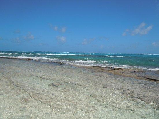 Johnny Cay : vista da praia