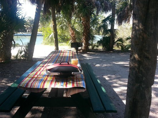 Fort de Soto Park Campground: Our view