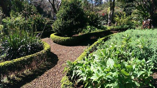Casa Velha do Palheiro : Hotel garden