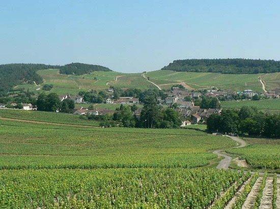 Saint-Martin-sous-Montaigu, France : Vallon de Mercurey à 2km des gites (promenade à pied)
