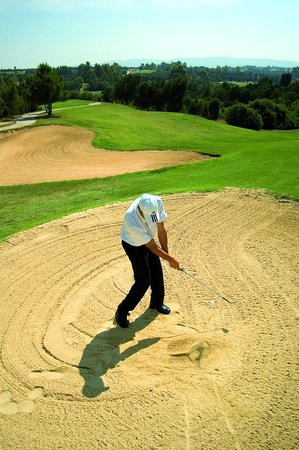 The Sindbad: Golf