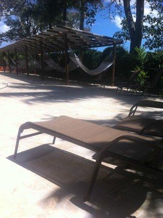 Barcelo San Jose : Pool