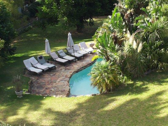 De Molen Guest House: The lovely pool