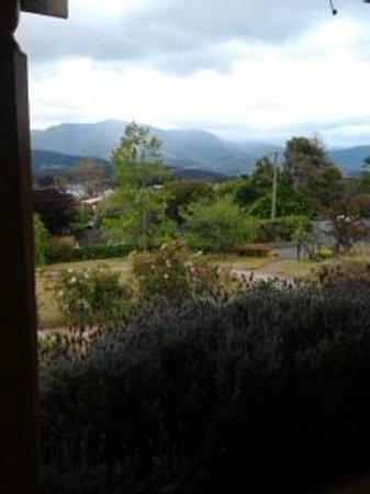 Orana House Bed & Breakfast: Aussicht aus dem Zimmer