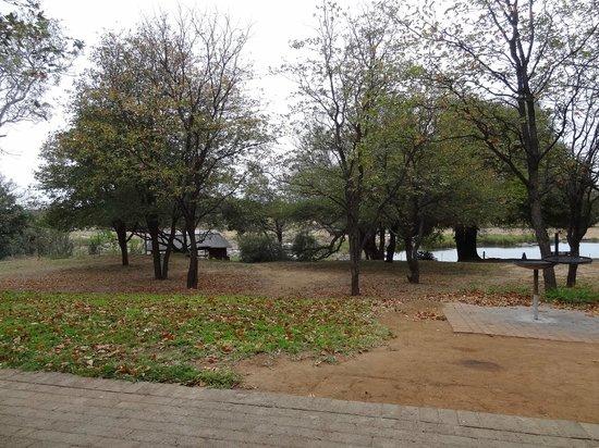 Shimuwini Bushveld Camp: Het kamp