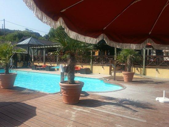 Les Tresoms, Lake and Spa Resort : La piscine et la terrasse de la brasserie