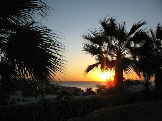 Domina Coral Bay Oasis: Из-за разницы во времени каждое утро любовалась рассветами