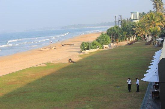 The Surf Hotel: Территория отеля
