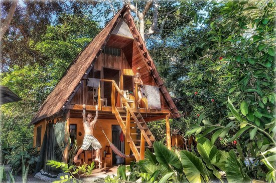The Howler Monkey Hotel: Bungalow