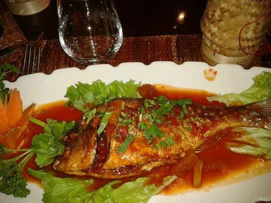 Thai Oria: Mon plat : daurade aux 3 délices