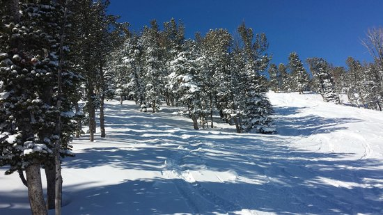 Red Lodge Mountain: Bottomless powder and ego snow