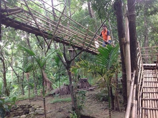 Mawlynnong Waterfall: way to tree Machaan
