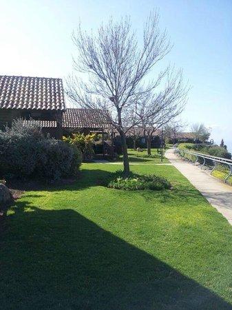 Kfar Haruv Peace Vista Lodge: View outside the room