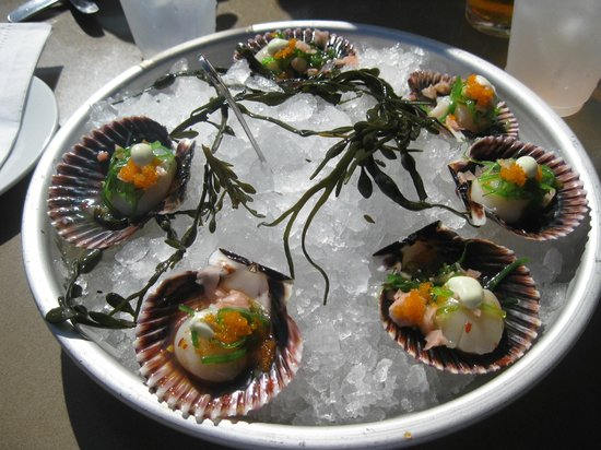 Bluewater Avalon Seafood Restaurant Ponzu Sashimi Sea Scallops With Wasabi Aioli And Wakame Salad