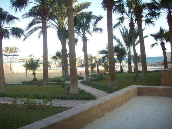 Triton Empire Beach Resort: skøn have