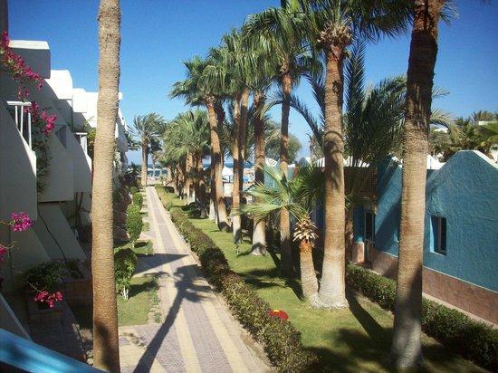 Triton Empire Beach Resort: udsigt