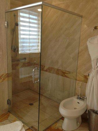 Hilton Bentley Miami/South Beach: Shower