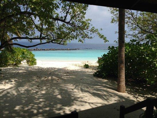 Royal Island Resort & Spa : От террасы до океана 10 шагов