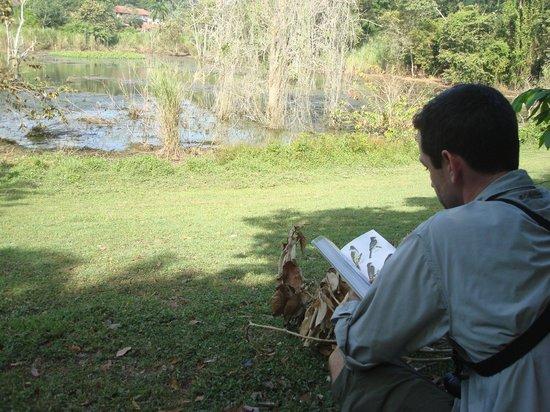 Albrook Inn: birding at pond