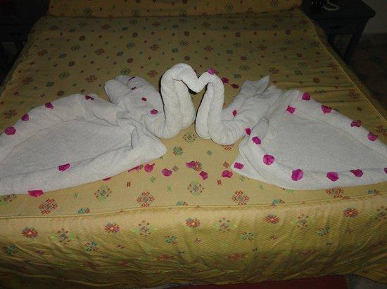 Al Diwan Resort : animals on the bed