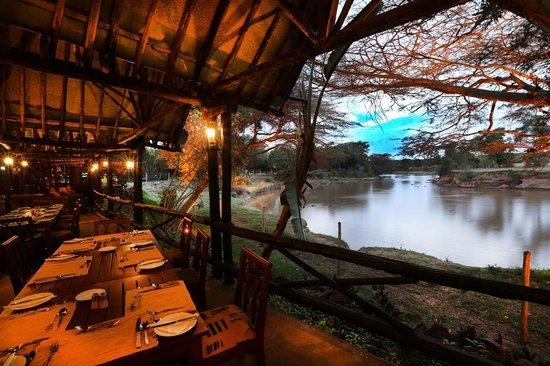 Mara River Lodge: Hippo city