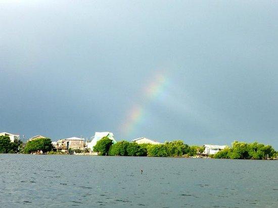 Grand Caribe Belize Resort and Condominiums : rainbow