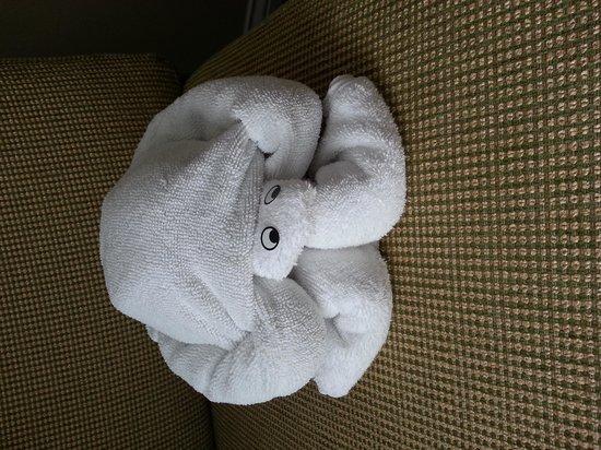 Marriott's Newport Coast Villas: turtle shaped towel in room