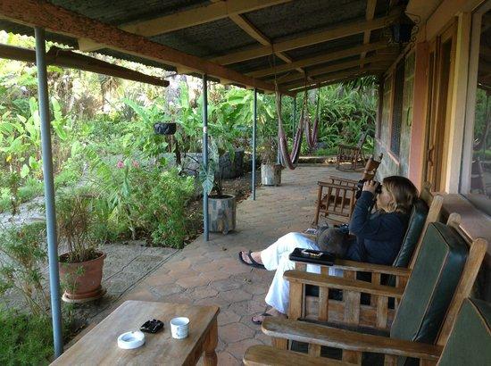 Posada de Santiago: Front of La Hacienda in the morning with friendly cat