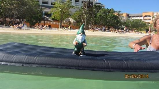 Iberostar Rose Hall Beach Hotel: sask.roughriders are world wide!