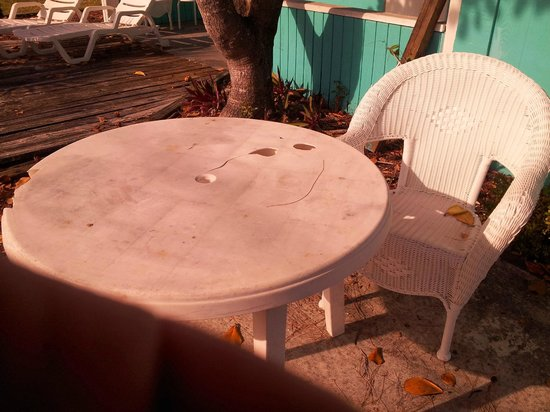 Fiesta Key RV Resort & Marina: Why bother with a table if it looks like this.