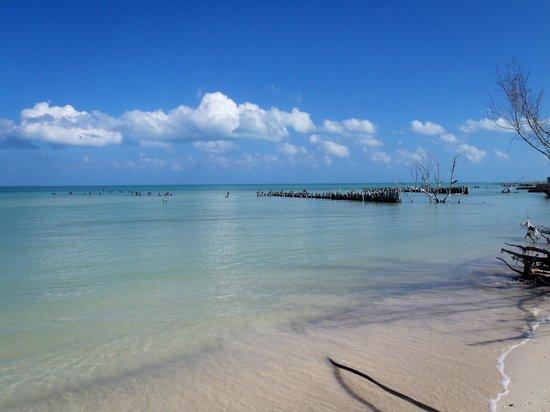 Casa BlatHa: playa
