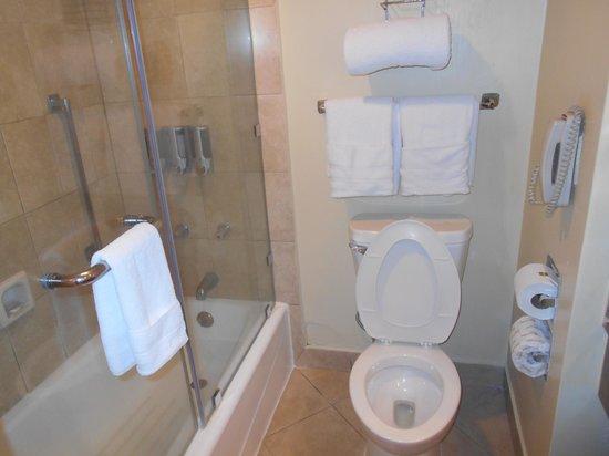 Barcelo Guatemala City: View of the bathroom
