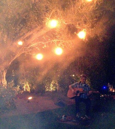 Desert Riviera Hotel: Live music beneath a lantern-lit tree!