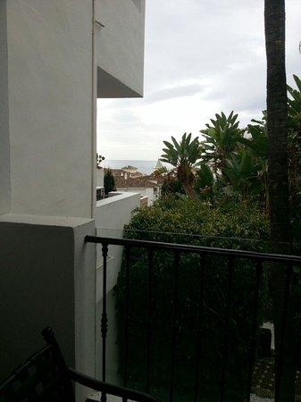 Royal Oasis Club at Pueblo Quinta: The view