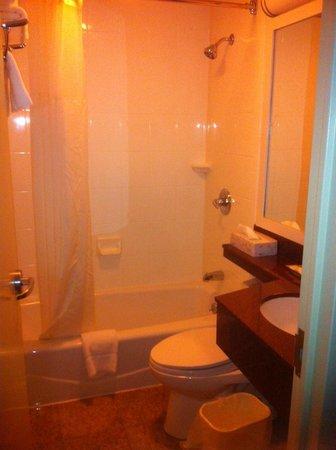 Quality Inn Long Island City: Nice, clean bathroom