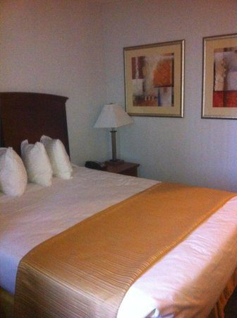 Quality Inn Long Island City: Bed 2