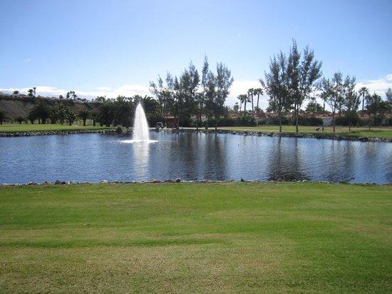 eo Suite Hotel Jardin Dorado: garden view -golf course