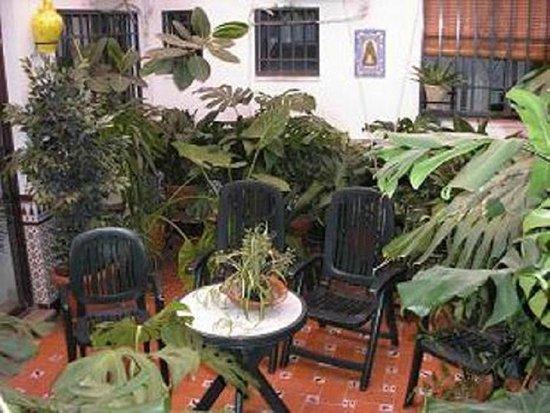 Hospederia Colon Antequera: Patio Andaluz hostal Colon Antequera