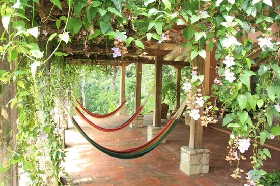 "La Villa de Soledad B&B : The ""hammock patio"". One of the more popular areas for our guests..."